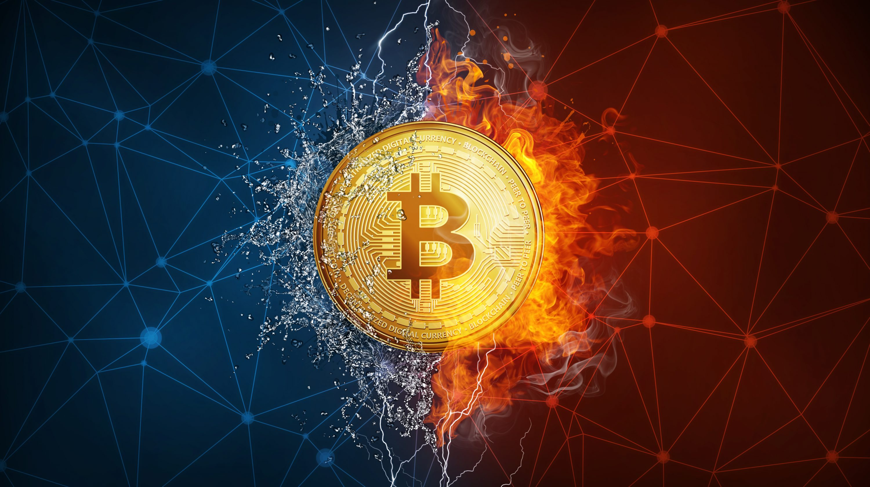 https steemit.com cryptocurrency bitcoinman why-you-should-invest-in-waves
