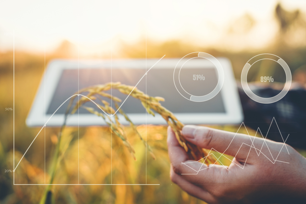 Malaysia's DSTE Capital Launches Blockchain Platform to Track Agricultural Produce
