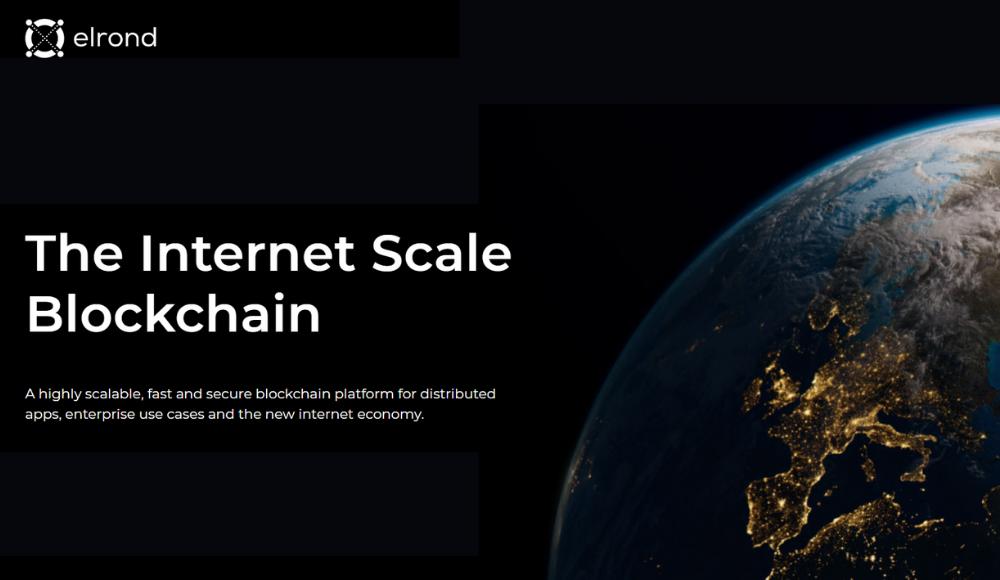 Elrond: On Demand yet Scalable Blockchain Technology